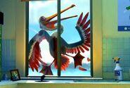 Nigel Flying into a Window