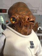 Ackbar Star Wars