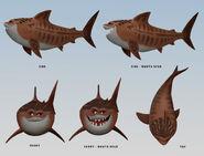 Jenny-harder-moa-maui-shark2-jenny