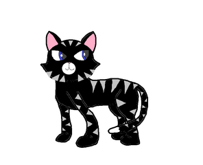 Lucky the Black Cat