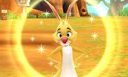 DMW - Rabbit