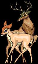 Bambi-Faline RichB