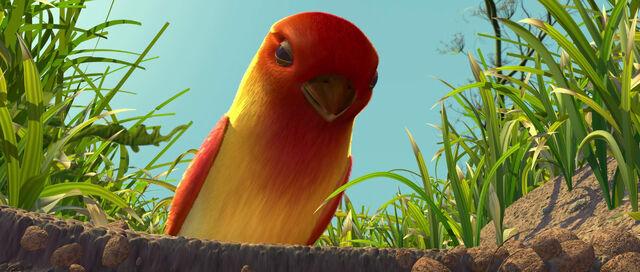 File:The Bird.jpeg