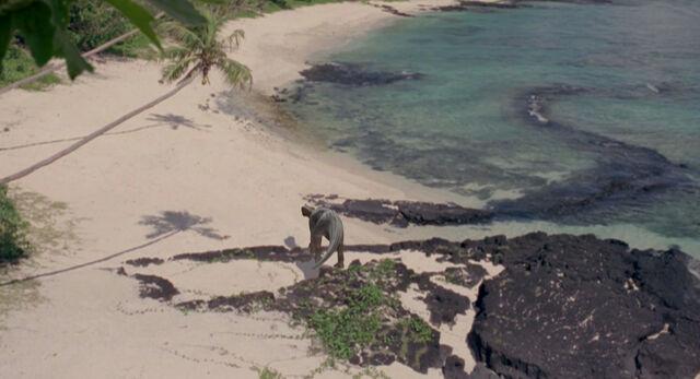 File:Matareva Beach, Western Samoa.jpg