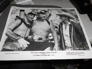 The Treasure of San Bosco Reef Press Photo