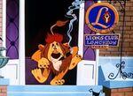 Social lion 11large