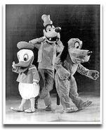 Disney on Parade 1973