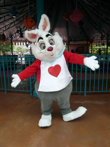 File:White Rabbit HKDL.jpg