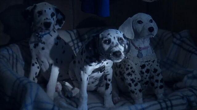 File:102-dalmatians-disneyscreencaps.com-6821.jpg