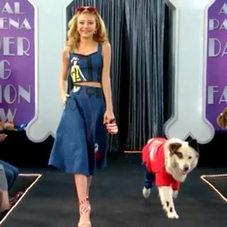 File:Dog on a Catwalk.jpg