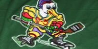 District 5 Ducks