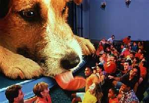 File:Quark in Honey I Shrunk the Audience.jpg