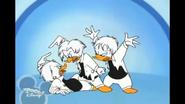 Quackstreet Boys quit