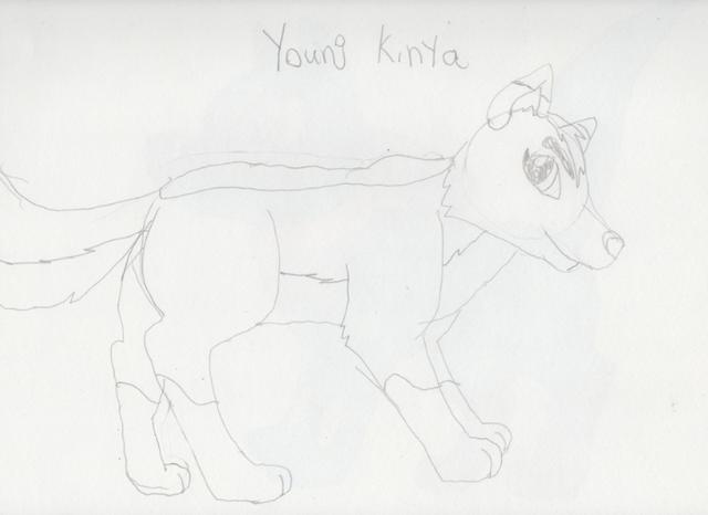 File:Young Kinya Sketch.png