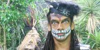 Tarantula Shaman
