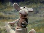 Character.kangaroo