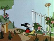 Mickey's Garden-28