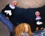 Vultures 1