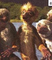 File:Zini with girl lemurs.jpg
