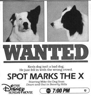 spot marks the x disney wiki fandom powered by wikia