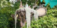 Pixie Hollow (attraction)