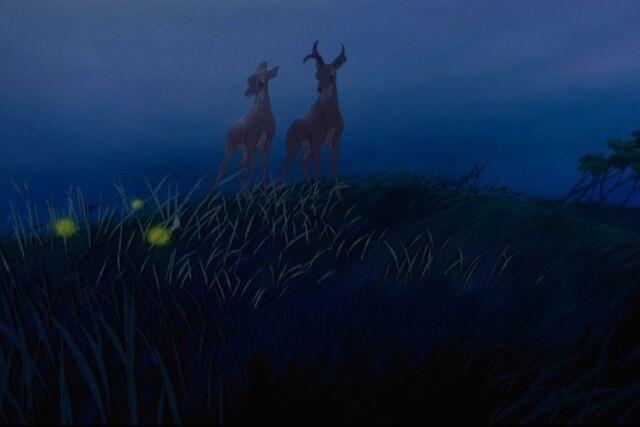 File:Bambi 366.jpg
