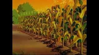 File:Cleanliness brings health cornfields.jpg