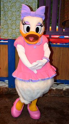 File:Daisy-duck-and-donald-duck-meet-and-greet-at-animal-kingdoms-discovery-island-6.jpg