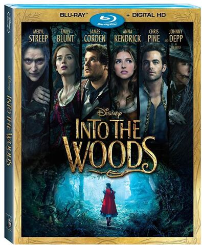 File:Into the Woods Blu-Ray DVD Cover.jpg