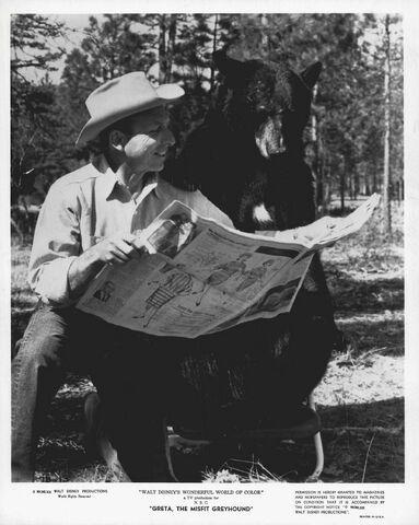 File:Lansburgh-bei-der-produktion-von-greta-the-misfit-greyhound-1963.jpg