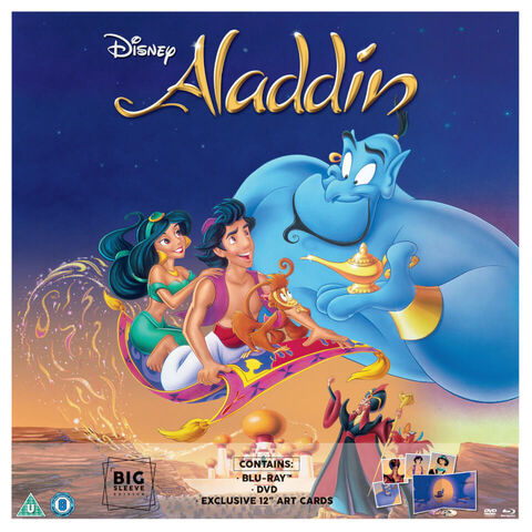 File:Aladdin Big Sleeve.jpg