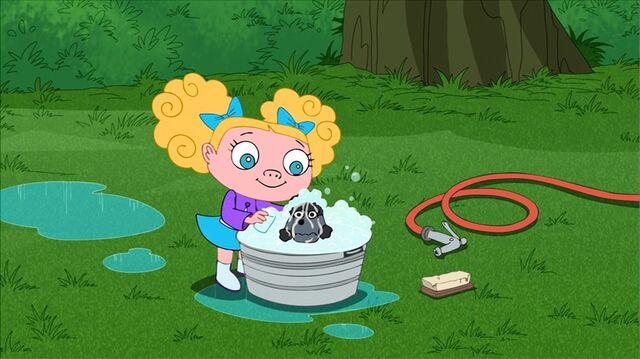 File:Suzy washing her poodle.JPG