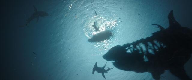 File:Sharks DMTNT.jpg