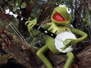 File:Kermit1.jpg