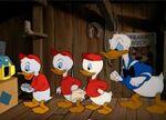 Donald happy birthday 1