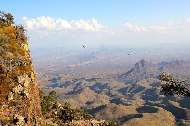 File:Chihuahuan desert.jpg