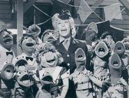 Tomlin muppets