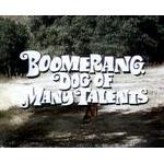File:G boomerang-dog-of-many-talents-dvd-disney-rare-c3886.jpg