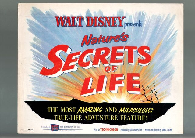 File:Secrets of life lobby.jpg
