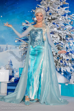 Elsa The Snow Queen Disney Wiki Fandom Powered By Wikia