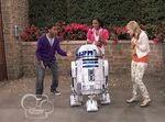 R2 D2 ANT Farm