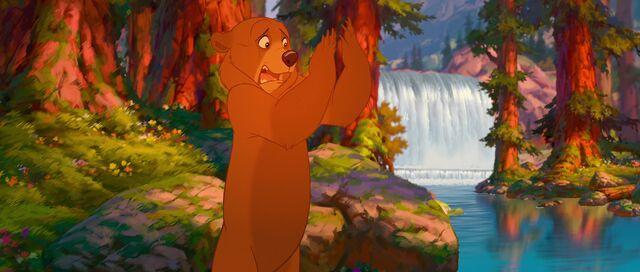 File:Bear 12.jpg
