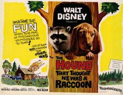 The Hound That Thought He Was a Racoon