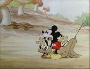 Mickey's Garden-50