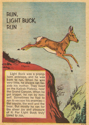 File:Run Light Buck Run Comic.jpg