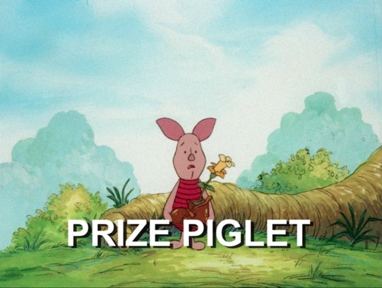 File:Prizepiglet.jpg
