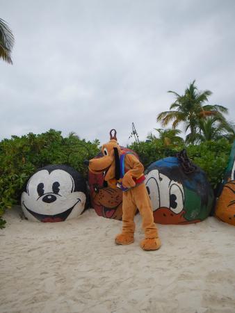 File:Pluto at castaway cay.jpg