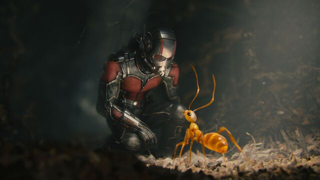 File:Ant-Man (film) 115.jpg
