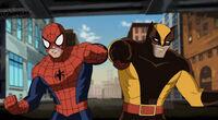 Ultimate-spider-man-wolverine02