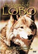The Legend of Lobo DVD